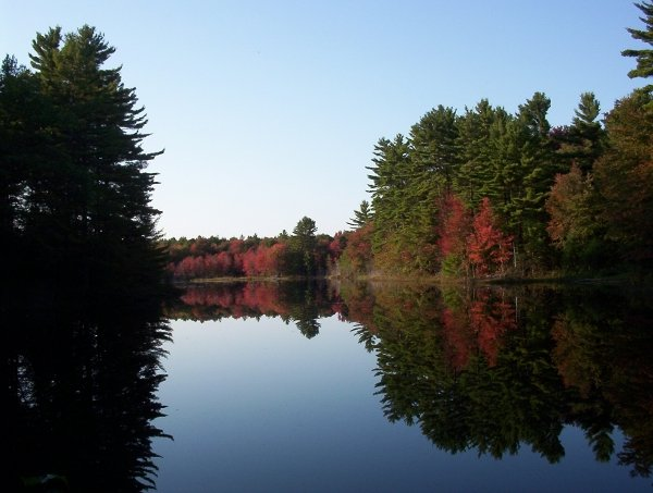 Fiske Pond from South